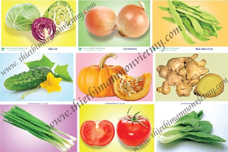 Tranh về các rau, quả, củ